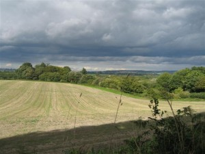 A view over the downs