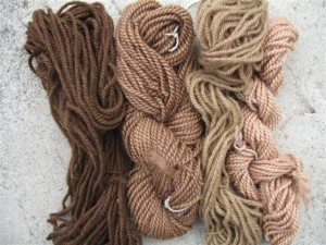 Skeins dyed in the walnut dyebath