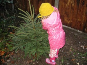 Milly watering her Christmas tree