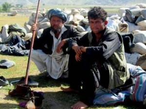 afghan goat herders by their flock